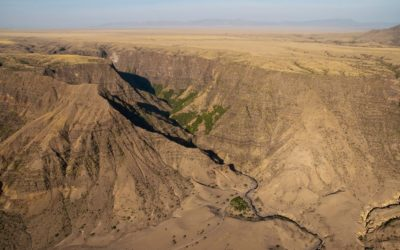 The East African Rift System and its Likely Origins
